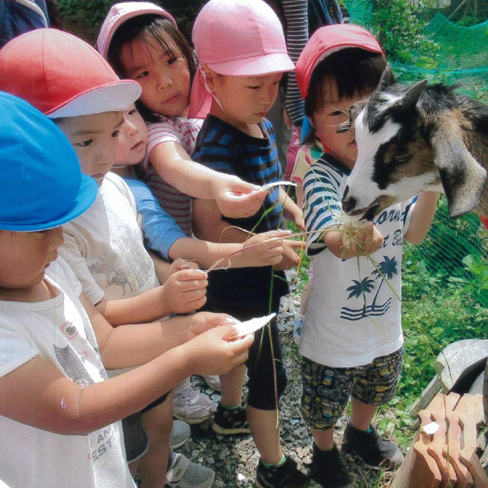 丹波福知山は自然いっぱい楽しい遊び場いっぱい